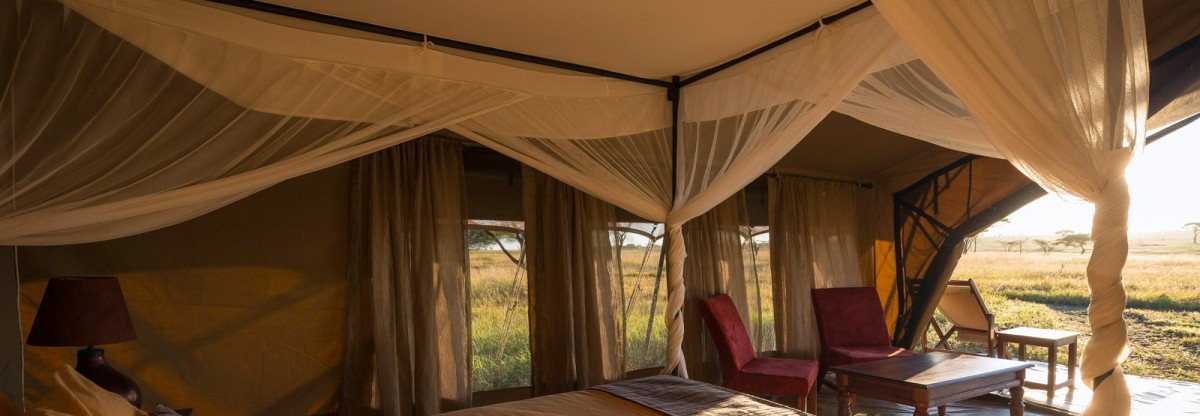 8 Days Tanzania Lodge Safaris