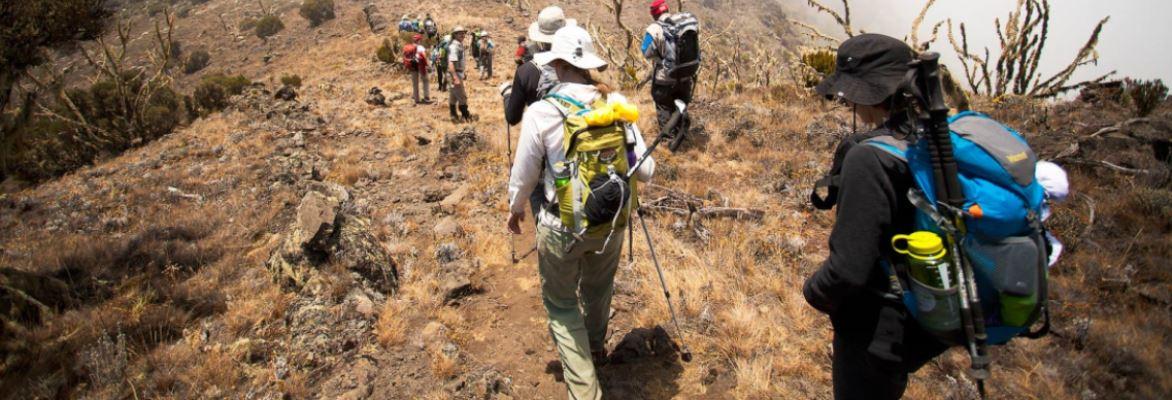 Kilimanjaro 8 Days Tours