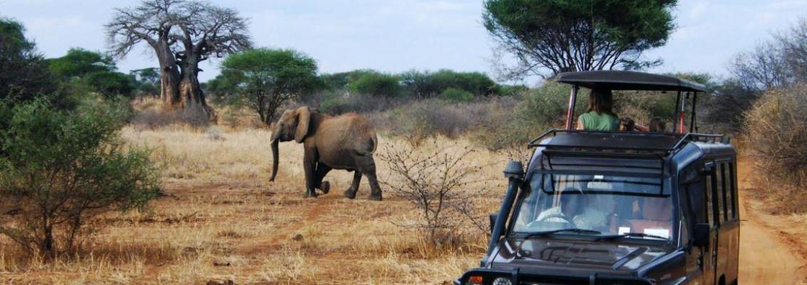 family tour in tanzania
