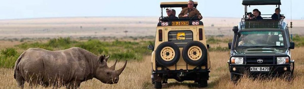 Tanzania Lodge Safari Packages