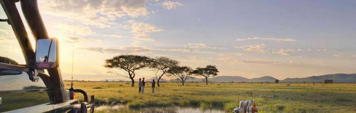 8 Days Tanzania Luxury Wildlife