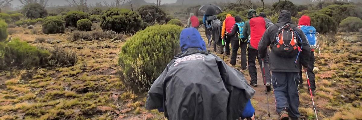 Climbing 7 Day Kilimanjaro