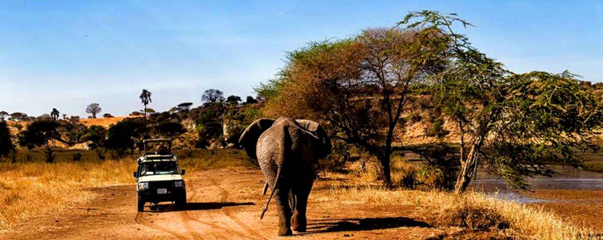 Travelling to Tanzania with Leken Adventure